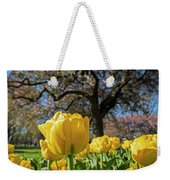 Yellow Tulips In The Public Garden Boston Ma Weekender Tote Bag