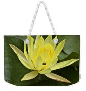 Yellow Waterlily With A Visiting Insect Weekender Tote Bag