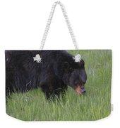 Yellowstone Black Bear Grazing Weekender Tote Bag