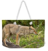 Yellowstone Coyote Scout Weekender Tote Bag