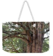 Yew Tree Entrance Weekender Tote Bag