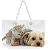 Yorkshire Terrier And Tabby Kitten Weekender Tote Bag