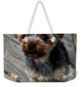 Yorkshire Terrier Puppy Weekender Tote Bag