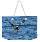 Young Bald Eagle II Weekender Tote Bag