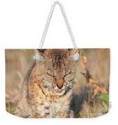 Young Bobcat 02 Weekender Tote Bag