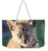 Young Bobcat 04 Weekender Tote Bag