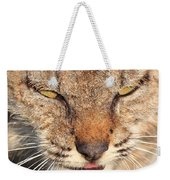 Young Bobcat Portrait 01 Weekender Tote Bag