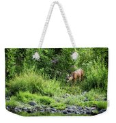 Young Doe Among The Flora, No. 2 Weekender Tote Bag