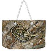 Young Eastern Garter Snake - Thamnophis Sirtalis Weekender Tote Bag