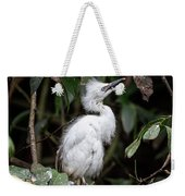 Young Egret Costa Rica Weekender Tote Bag