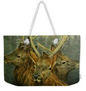 Young Elk Trio- Wapiti Weekender Tote Bag