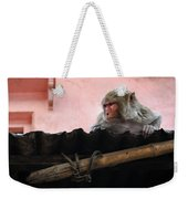 Young Female Asian Monkey Sitting On The Roof Weekender Tote Bag