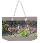 Young Foxes At The Den Weekender Tote Bag