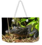 Young Gator Weekender Tote Bag