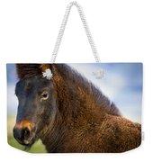 Young Icelandic Horse Weekender Tote Bag
