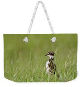 Young Killdeer In Grass Weekender Tote Bag