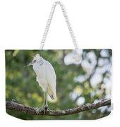 Young Little Blue Heron Weekender Tote Bag