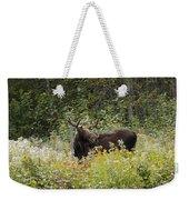 Young Male Moose Weekender Tote Bag