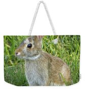 Young Rabbit Weekender Tote Bag