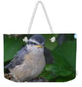 Young Red-breasted Nuthatch No. 1 Weekender Tote Bag