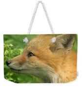 Young Red Fox In Profile Weekender Tote Bag