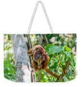 Young Red Howler Monkey Weekender Tote Bag