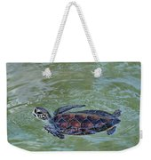 Young Sea Turtle Weekender Tote Bag