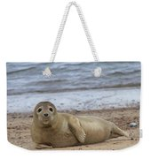 Young Seal Pup On Beach - Horsey, Norfolk, Uk Weekender Tote Bag