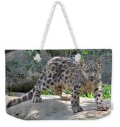 Young Snow Leopard Weekender Tote Bag