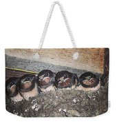 Young Swallows, Lancashire, England, Uk Weekender Tote Bag