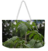 Young Tomato Weekender Tote Bag