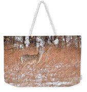 Young White-tailed Deer In The Snow Weekender Tote Bag