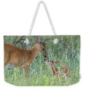 Young White-tailed Deer Say Hello Weekender Tote Bag