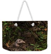 Young Wild Turkeys Weekender Tote Bag