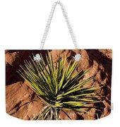 Yucca Five Weekender Tote Bag