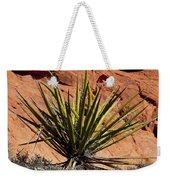Yucca Two Weekender Tote Bag