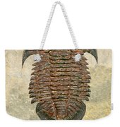 Yuepingia Fossil Trilobite Weekender Tote Bag