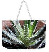 Zebra Cactus  Weekender Tote Bag