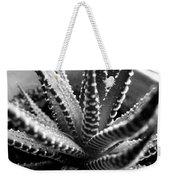 Zebra Cactus Bw Weekender Tote Bag