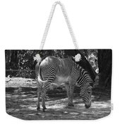 Zebra In Black And White Weekender Tote Bag