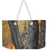 Zebra In Mopane Textures Weekender Tote Bag