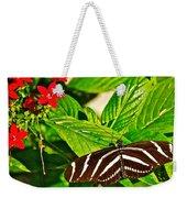 Zebra Longwing Butterfly In Living Desert Zoo And Gardens In Palm Desert-california  Weekender Tote Bag