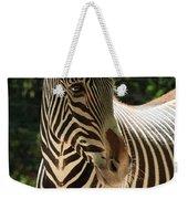 Zebra Portrait Weekender Tote Bag