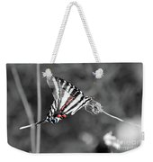 Zebra Swallowtail Butterfly 2016 Weekender Tote Bag