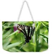 Zebra Swallowtail Butterfly In Green Weekender Tote Bag