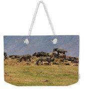 Zebras In The Ngorongoro Crater, Tanzania Weekender Tote Bag