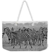 Zebras On The March Weekender Tote Bag