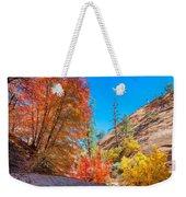 Zion Autumn Colors Weekender Tote Bag