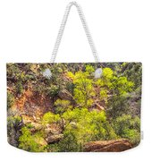 Zion National Park Small Tributary Of The Virgin River Weekender Tote Bag