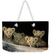 Four Cubs Weekender Tote Bag